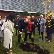 a tree-planting ceremony  3