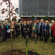 a tree-planting ceremony  2