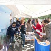 Polish Culture Days in Kaliningrad 10